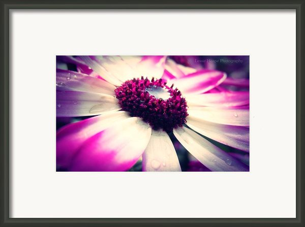 Shallow Pools Framed Print By Lessie Heape
