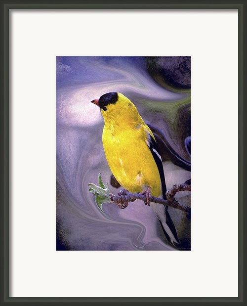 She Enjoyed The Softness Of Twilight... Framed Print By Arthur Miller