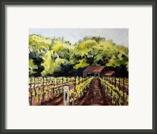 Shed In A Vineyard Framed Print By Sarah Lynch