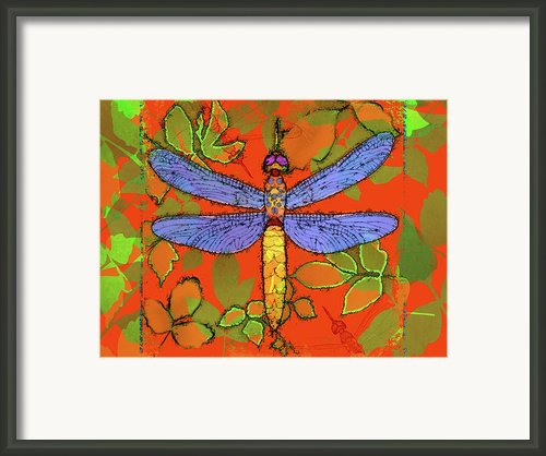 Shining Dragonfly Framed Print By Mary Ogle