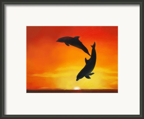 Showing Off Framed Print By Darlene Richardson