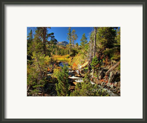 Sierra Nevada Fall Beauty At Lily Lake Framed Print By Scott Mcguire