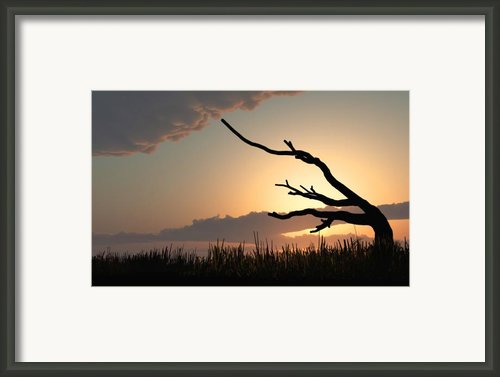 Silhouette Framed Print By Bob Orsillo