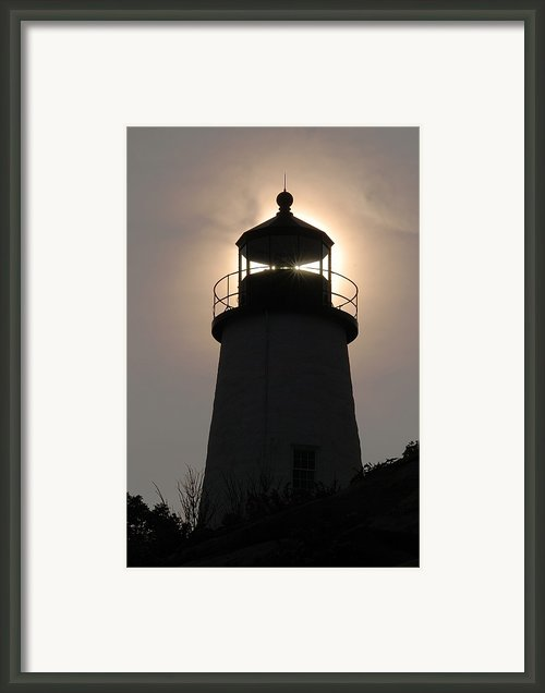 Silhouetted Pemaquid Lighthouse Framed Print By Darlyne A. Murawski