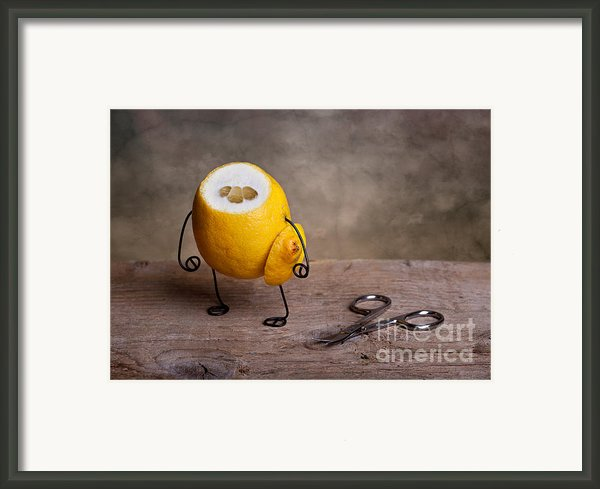 Simple Things 11 Framed Print By Nailia Schwarz