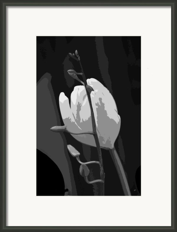Simplicity Framed Print By Gerlinde Keating - Keating Associates Inc