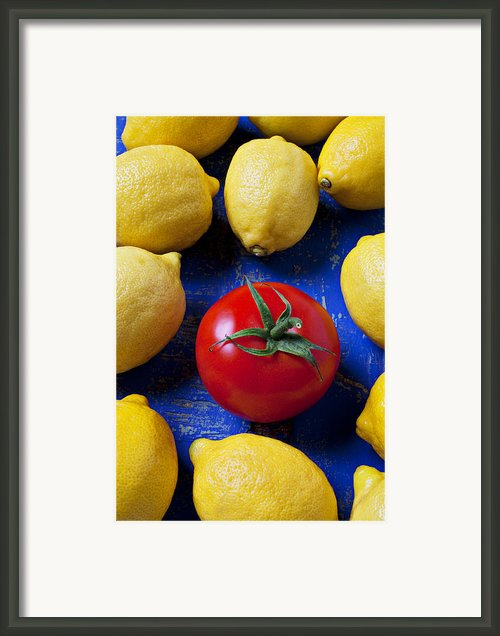 Single Tomato With Lemons Framed Print By Garry Gay