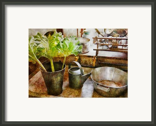 Sink - Eat Your Greens Framed Print By Mike Savad