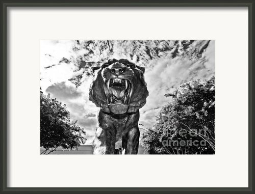Sir Mike Framed Print By Scott Pellegrin