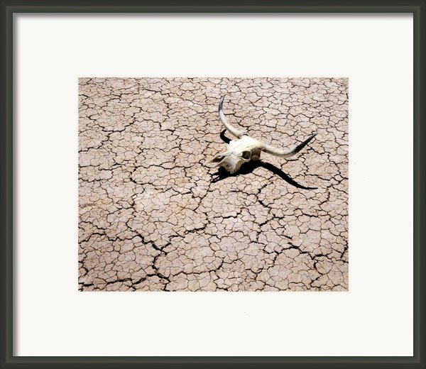 Skull In Desert 2 Framed Print By Kelley King