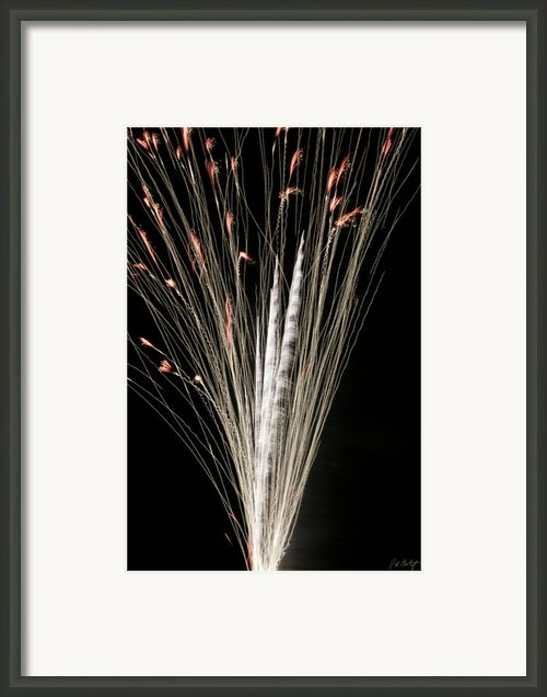Sky Flowers Framed Print By Phill  Doherty