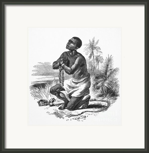 Slavery: Abolition Framed Print By Granger
