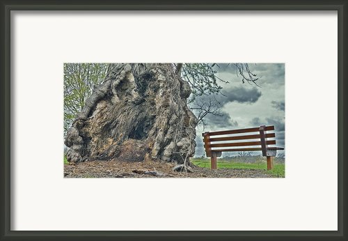 Sleepy Hallow Awakens Framed Print By Jeramie Curtice