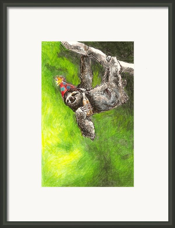 Sloth Birthday Party Framed Print By Steve Asbell