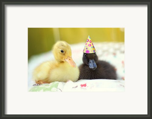 Slumber Party Framed Print By Amy Tyler