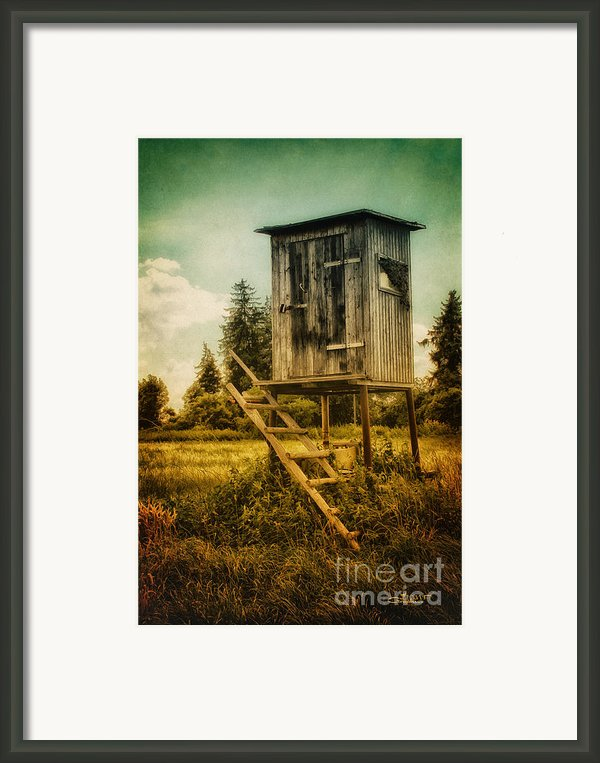 Small Cabin With Legs Framed Print By Jutta Maria Pusl
