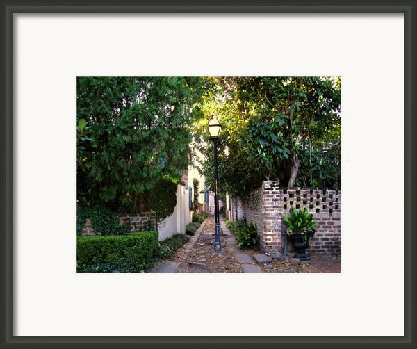 Small Lane In Charleston Framed Print By Susanne Van Hulst