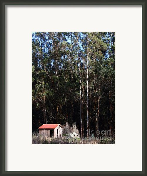 Small Shack Near The Town Of Bodega . 7d12422 Framed Print By Wingsdomain Art And Photography
