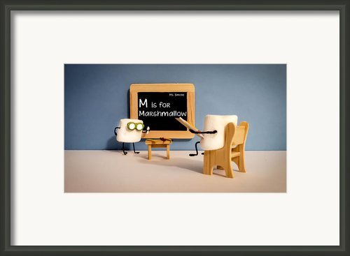 Smore School Framed Print By Heather Applegate
