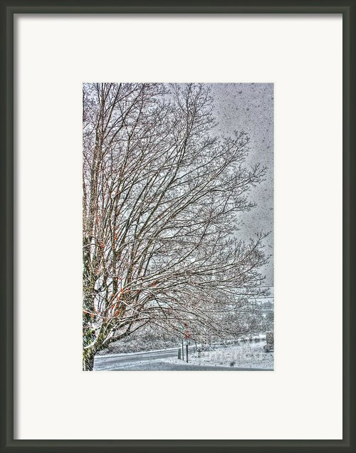 Snow Blind Framed Print By Dan Stone