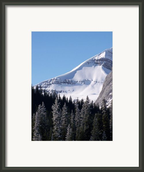 Snow Ledge Framed Print By Greg Hammond