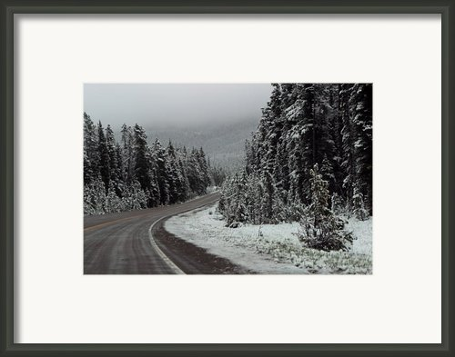 Snow On Road Through Forest Framed Print By Linda Phelps