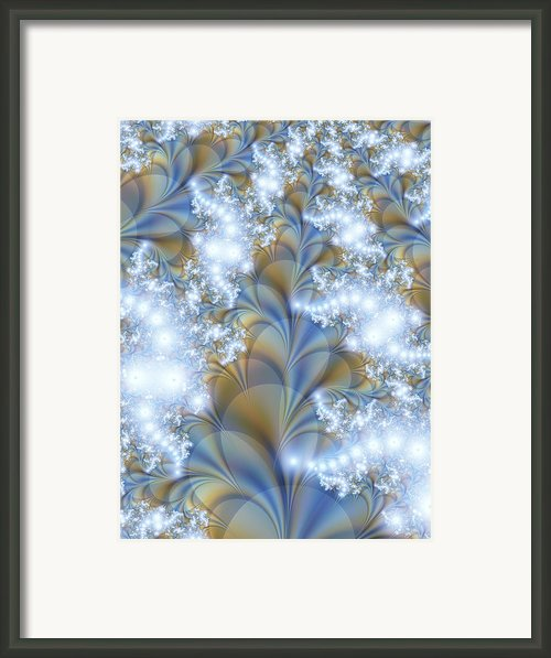Snow Petals Framed Print By Lauren Goia