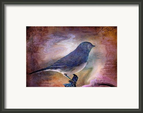 Snowbird Stories... Framed Print By Arthur Miller