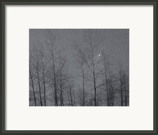 Snowy Winter Night Framed Print By Marion Mccristall