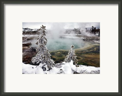 Snowy Yellowstone Framed Print By Jason Maehl
