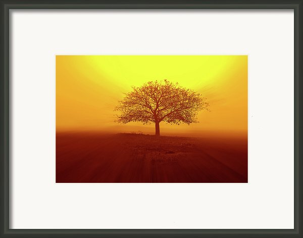 So Lonely Framed Print By Philippe Sainte-laudy Photography