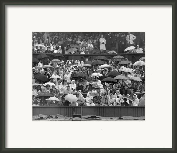 Soggy Supporters Framed Print By Ron Stone