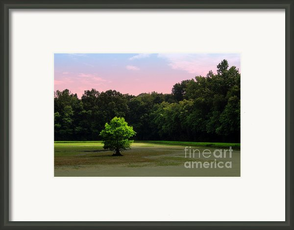 Solitude Framed Print By Jody Cooley