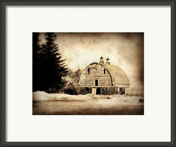 Somethings Missing Framed Print By Julie Hamilton