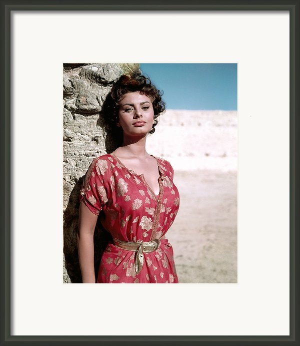 Sophia Loren, 1950s Framed Print By Everett