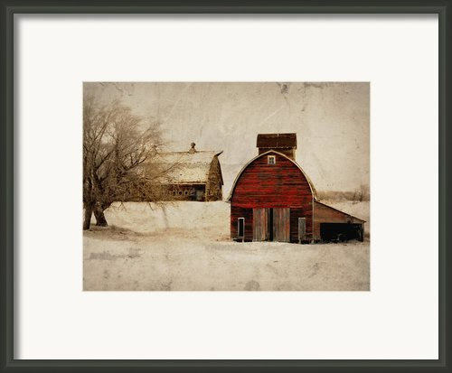South Dakota Corn Crib Framed Print By Julie Hamilton