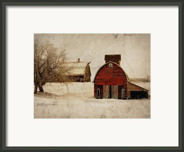 South Dakota Corn Crib Framed Print By Julie Hamilton