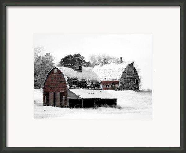 South Dakota Farm Framed Print By Julie Hamilton