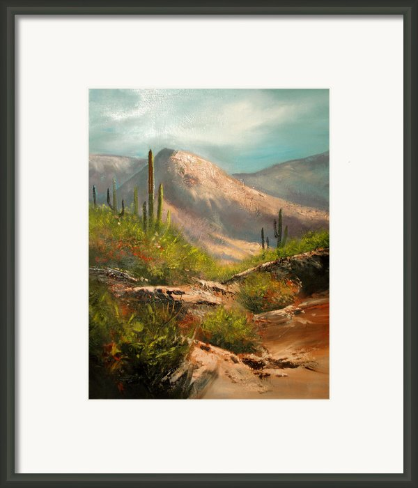 Southwest Beauty Framed Print By Robert Carver