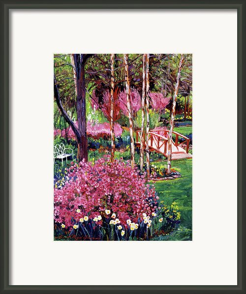 Spellbound Color Impressions Framed Print By David Lloyd Glover