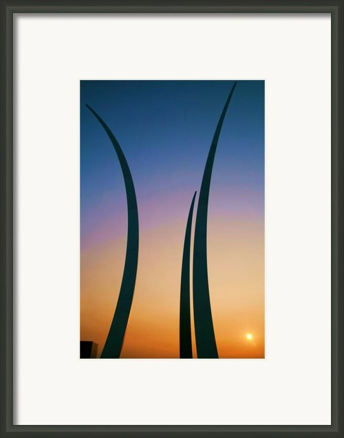 Spirit And Dignity Framed Print By Mitch Cat