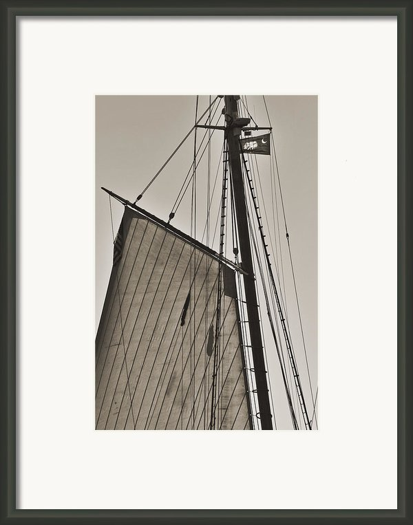 Spirit Of South Carolina Schooner Sailboat Sail Framed Print By Dustin K Ryan