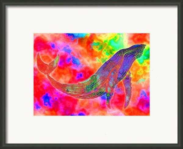 Spirit Whale Framed Print By Nick Gustafson