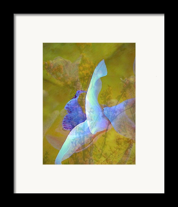 Spread To The Wind Framed Print By Shirley Sirois