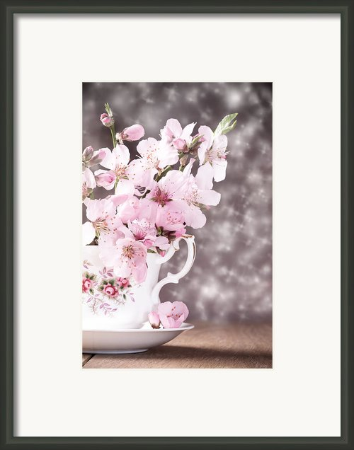 Spring Blossom Framed Print By Christopher And Amanda Elwell