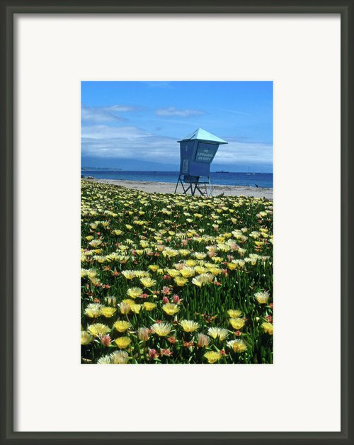 Spring Break Santa Barbara Framed Print By Kathy Yates
