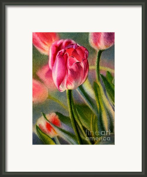 Spring Breeze Framed Print By Arena Shawn