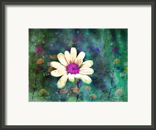 Spring Daydreams Framed Print By Tara Turner