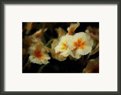 Spring Floral Framed Print By David Lane