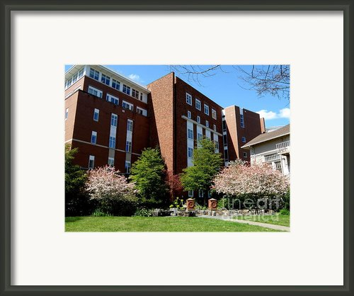 Spring In Oregon State University  3 Framed Print By Tanya  Searcy